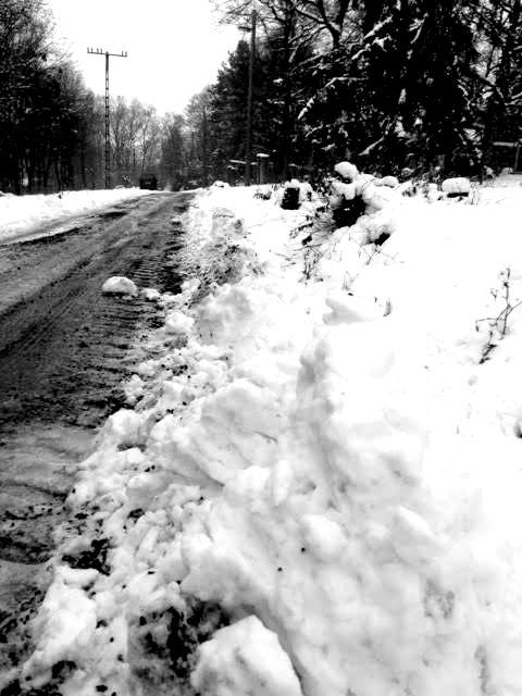 Téli előkészületek cikk
