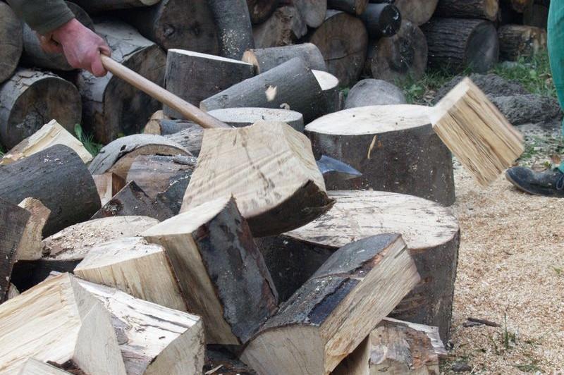 Tűzifa helyzet
