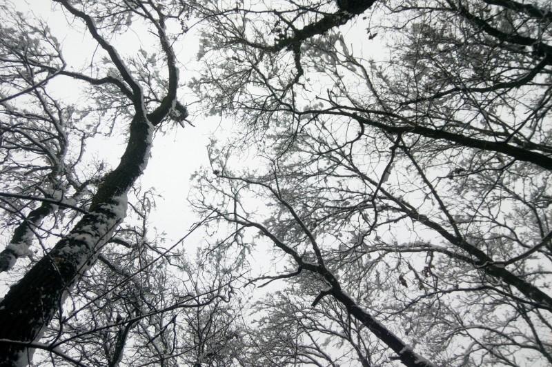 Erős kezdéssel nyitott a tél