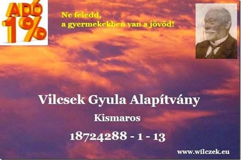 A Vilcsek Gyula Alapítványon keresztül is segíthetjük az iskolát