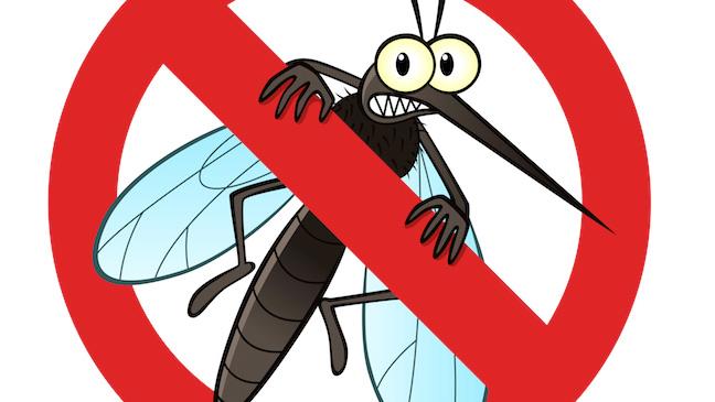 Szúnyoggyérítés 3
