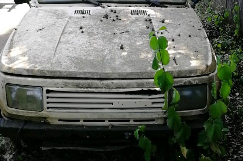 Újabb két rozzant járművet szállíttatott el a közterület-felügyelet Kismaros utcáiról