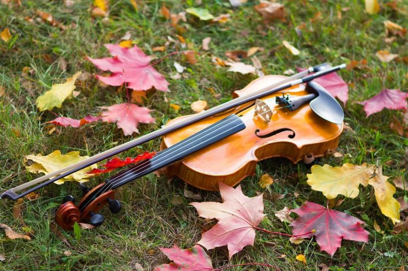 Őszi Zenés Vendégség a Lanner Kvartettel